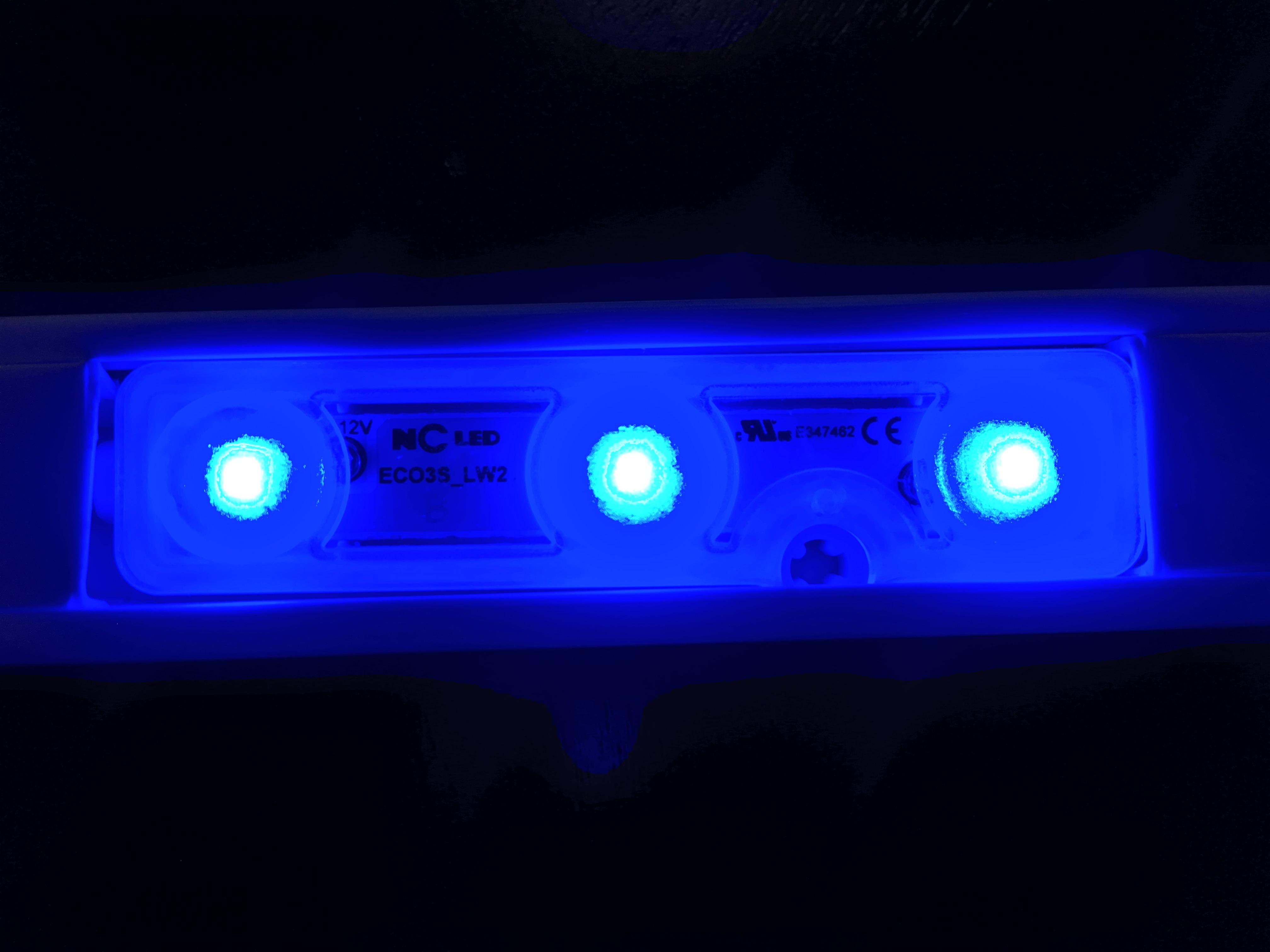 NcLED Module Wide Angle LED Blue (100 PCs)